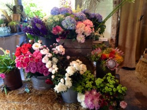 Fresh blooms available to purcahse